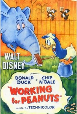 Постер фильма Работа за орехи (1953)