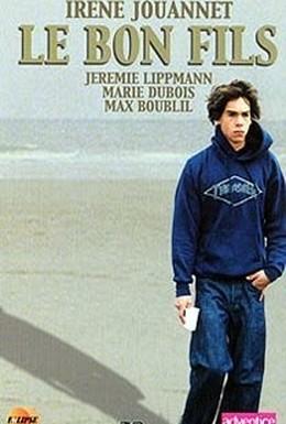 Постер фильма Хороший сын (2001)
