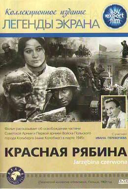 Постер фильма Красная рябина (1970)