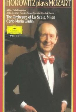 Постер фильма Хоровиц играет Моцарта (1987)