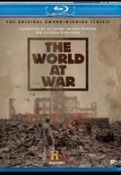 Мир в войне (1973)