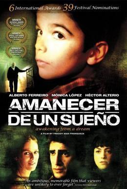 Постер фильма Пробуждение от сна (2008)