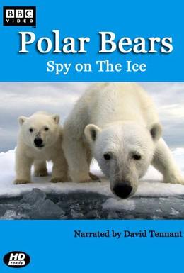 Постер фильма Белый медведь: Шпион во льдах (2011)