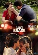 Проспект Бразилии (2012)