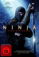 Ниндзя 2 (2013)