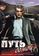 Путь домой (2009)