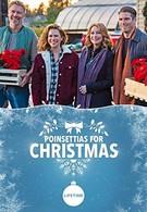 Пуансеттии на Рождество (2018)