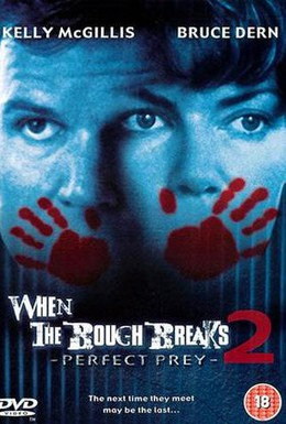 Постер фильма Идеальная жертва (1998)