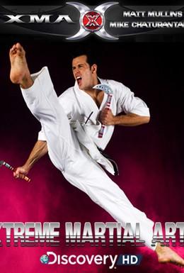 Постер фильма Экстремальные боевые искусства (2003)