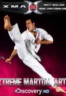Экстремальные боевые искусства (2003)
