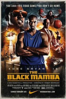 Постер фильма Черная мамба (2011)