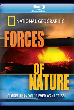 Постер фильма Стихийные бедствия: Силы природы (2004)