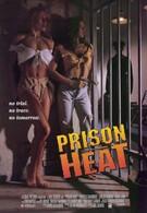 Тюремная жара (1993)