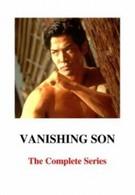 Исчезающий сын 3 (1994)