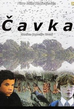 Постер фильма Галка (1988)