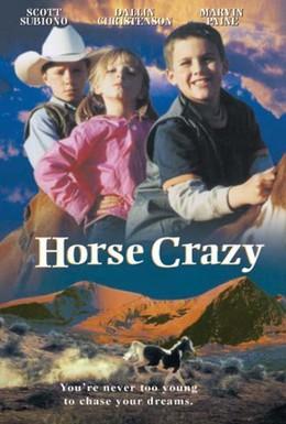 Постер фильма Дикая лошадь (2001)