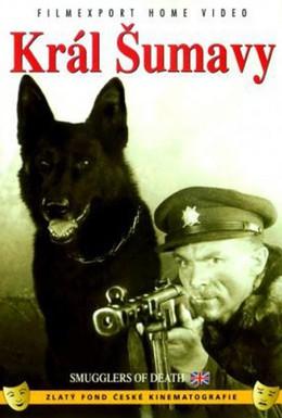 Постер фильма Король Шумавы (1959)
