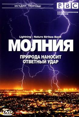 Постер фильма BBC: Молния. Природа наносит ответный удар (2004)