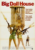 Дом большой куклы (1971)