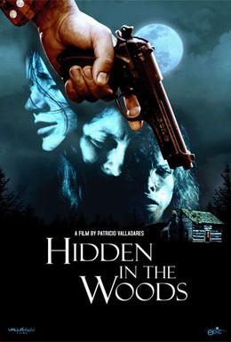 Постер фильма Спрятавшиеся в лесу (2012)