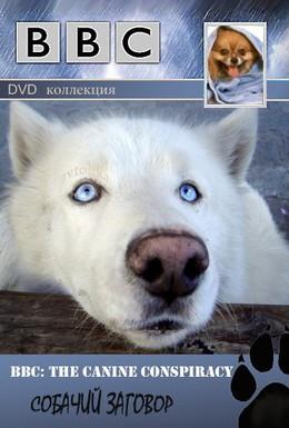 Постер фильма BBC: Собаки (2002)