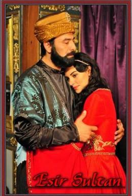 Постер фильма Султан невольник (2012)