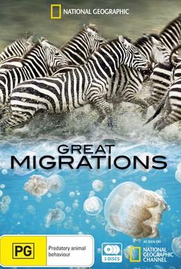 Постер фильма Великие миграции (2010)