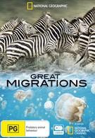Великие миграции (2010)