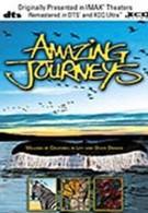 Удивительные путешествия (1999)