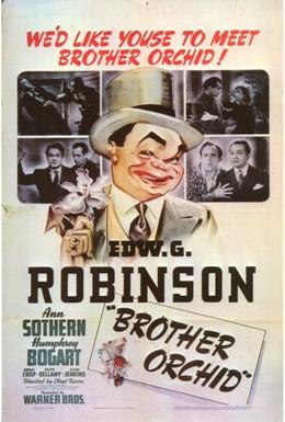 Постер фильма Брат Орхидея (1940)