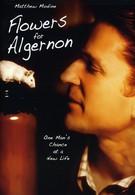 Цветы для Элджернона (2000)