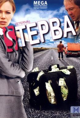 Постер фильма Стерва (2009)