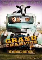 Великий чемпион (2002)