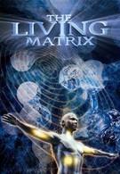Живая матрица (2009)
