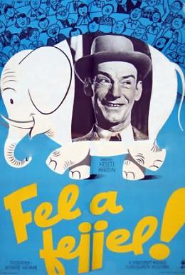 Постер фильма Выше голову! (1954)