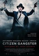 Гражданин гангстер (2012)