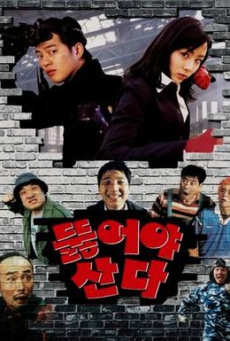 Постер фильма Железная лопата (2002)
