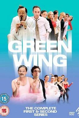Постер фильма Зеленое крыло (2004)