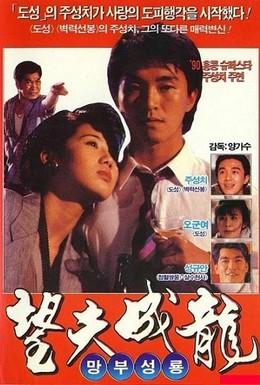 Постер фильма Любовь есть любовь (1990)
