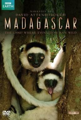 Постер фильма BBC: Мадагаскар (2011)