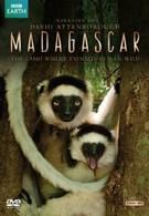 BBC: Мадагаскар (2011)