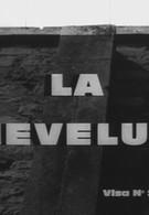 Шевелюра (1961)