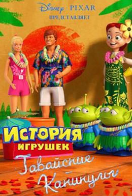 Постер фильма Гавайские каникулы (2011)