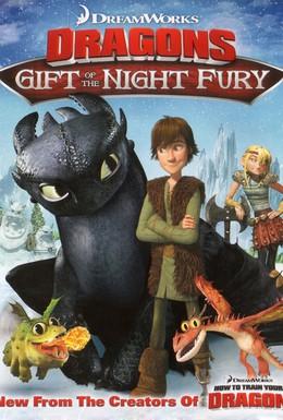 Постер фильма Драконы: Подарок ночной фурии (2011)