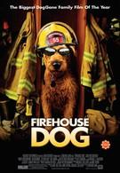 Пожарный пес (2007)