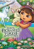 Приключения Даши в Заколдованном Лесу (2011)