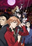 Рёко Якусидзи и загадочные преступления (2008)