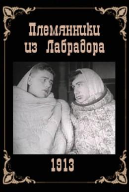 Постер фильма Племянники из Лабрадора (1913)