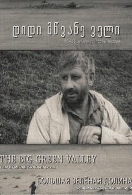 Постер фильма Большая Зелёная долина (1967)
