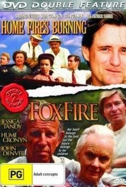 Постер фильма Огонь в домашнем очаге (1989)